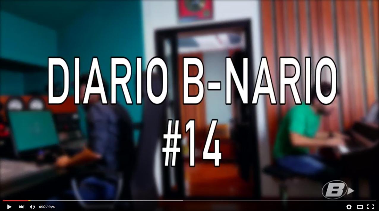 Diario-b-nario-14-pubblico