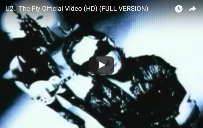u2-video-ant-the-fly