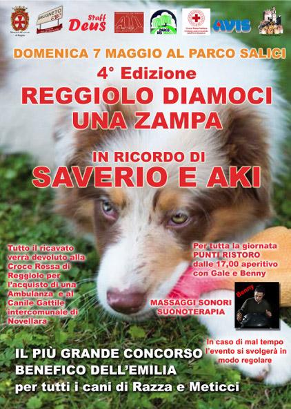 Radio bruno 4 edizione reggiolo diamoci una zampa - Portare il cane al canile ...